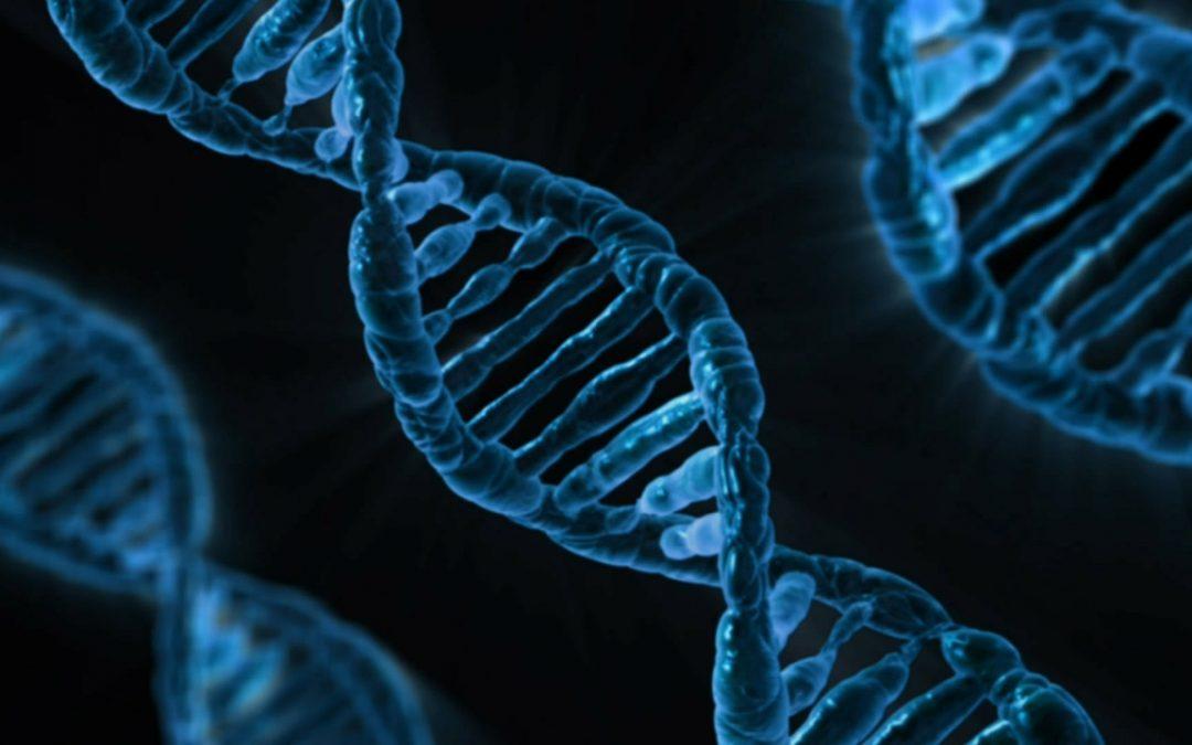 """#60 Har du """"rätt"""" genetik för din idrott?"""