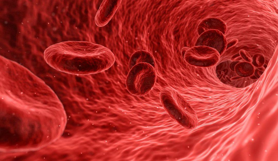 Vilken blodgrupp presterar bäst?