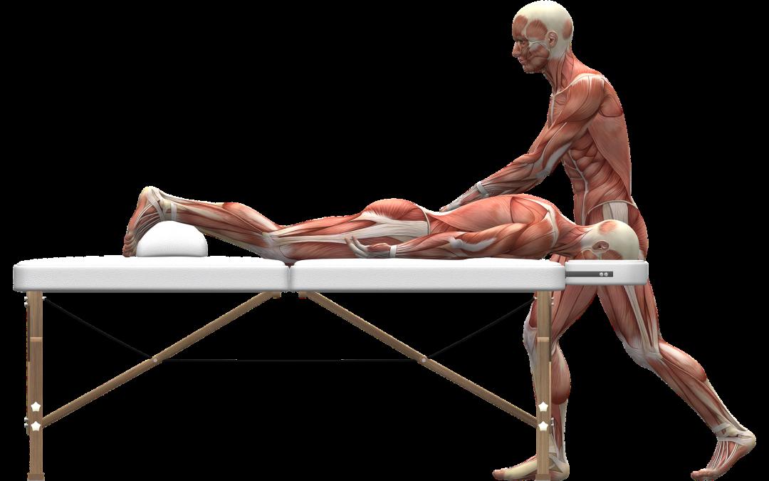 Massage för snabbare återhämtning